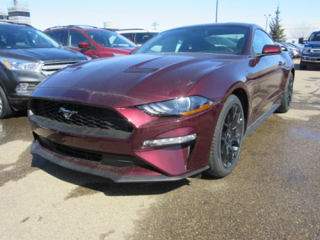 2018 Ford Mustang Ecoboost Performance Pkg