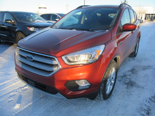 2019 Ford Escape 4dr Sel 4wd (FTS152) Main Image