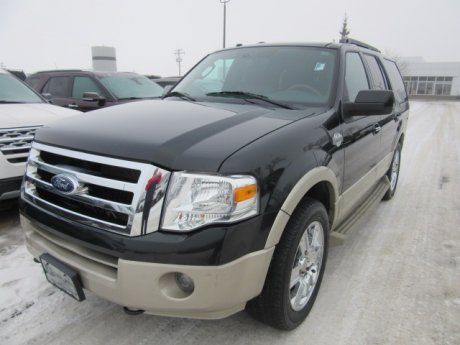 2010 Ford Expedition Expedition 4x4