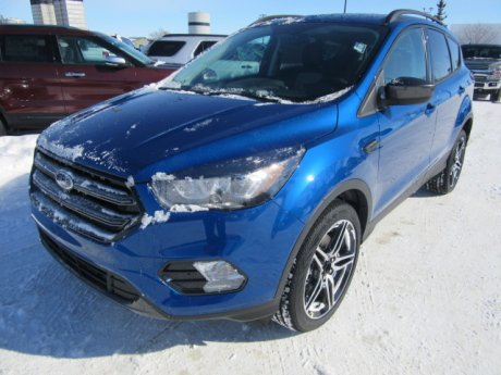 2019 Ford Escape 4dr Sel 4wd