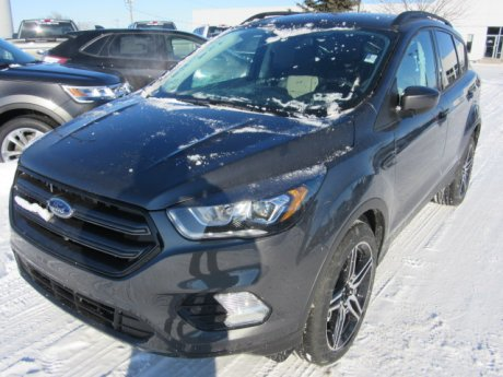 2019 Ford Escape 4dr Sel Sport pkg 4wd