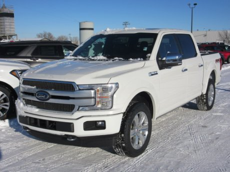 2020 Ford F-150 Platinum 4x4